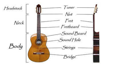 Parts of a guitar - the best acoustic guitar